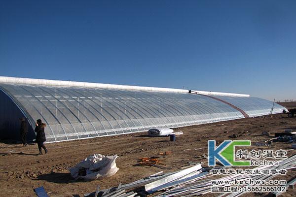 首页 温室大棚建设 高温蔬菜大棚建设