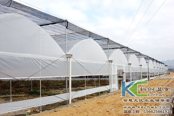 温室大棚造价,温室大棚,连栋温室