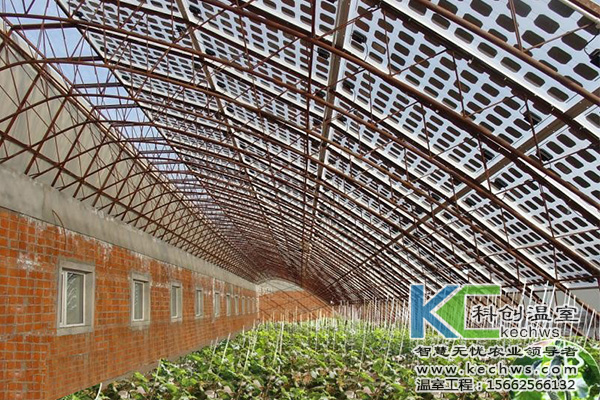 发展光伏农业温室大棚符合新能源发展潮流