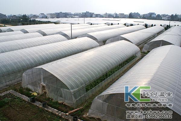 寿光蔬菜大棚图片_简易钢架蔬菜大棚设计与建设技术-寿光科创温室大棚