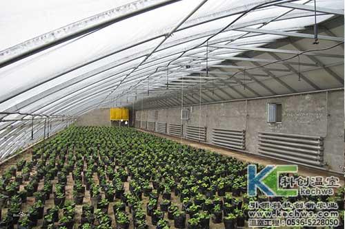 寿光蔬菜大棚图片_寿光蔬菜大棚-寿光科创温室大棚