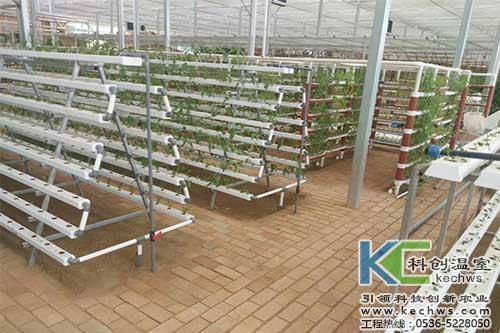 无土栽培,鱼菜共生,无土栽培技术