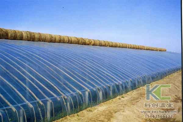 寿光蔬菜大棚图片_只要做好蔬菜棚土、肥、水管理,就能种出好蔬菜-寿光科创温室 ...